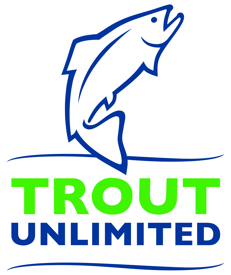 TU Logo - CMYK